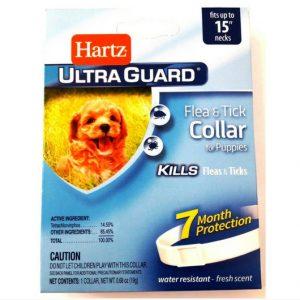 Collar antipulgas 7 meses para cachorro